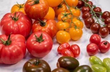 Classic Harvest Fruit & vegetables